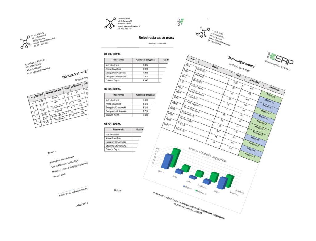 data erp rozbudowane raporty